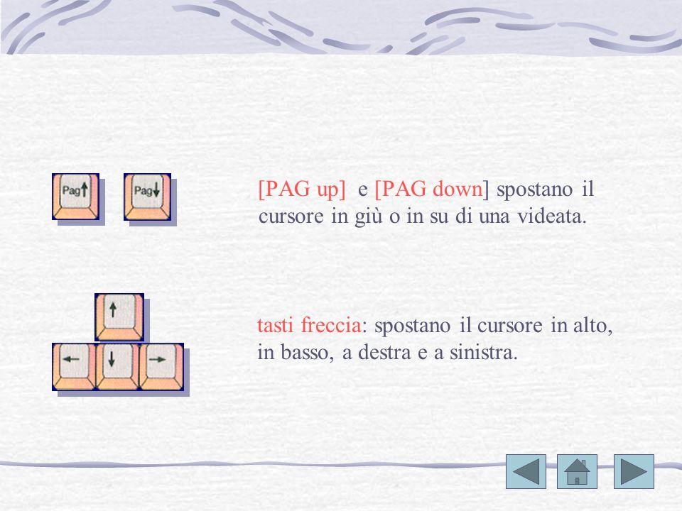 [PAG up] e [PAG down] spostano il cursore in giù o in su di una videata.